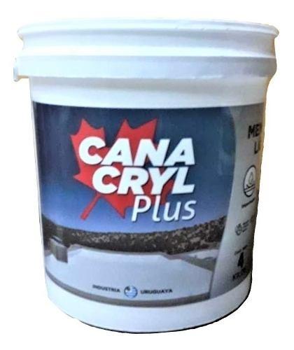 Membrana Liquida Muro Techo Azotea Impermeabilizante 20kg